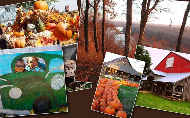 fall_banner12_sm