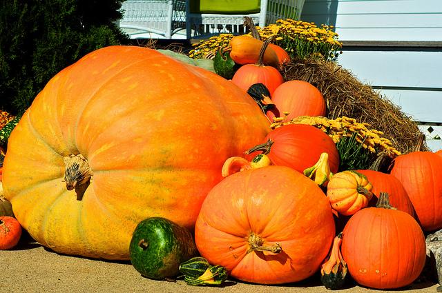 Pumpkins, Etc.
